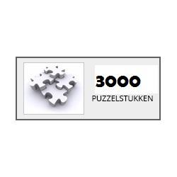 Puzzels 3000 stukjes